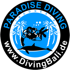 PT. Paradise Diving Indonesia – Bali